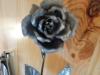 rosengarten01