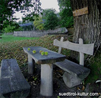 Kunst Kultur Natur Kastanienerlebnisweg