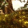 Romarienstrauch verbreitet einen unverwechselbaren Duft nach Sommer und Sonne. Rosmarin ist frostempfindlich und er sollte auch an einer windgeschützten Stelle im Garten gepflanzt werden, kann aber auch im Blumentopf herrlich […]
