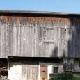 Tiers am Rosengarten 1028 ü.d.M. liegt mitten im Wanderwegnetz zwischen Seiseralm und Rosengarten. Am Dorfeingang von Tiers empfängt uns eine alte Wassermühle. Mit dieser wasserangetriebenen Mühle wurde in Tiers, seit […]