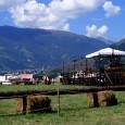 Die Ritterspiele in Schluderns (902 m.ü.d.M.) im herben oberen Vinschgau sind seit langem ein fester Bestandteil in Südtirol. An drei Tagen im August wird zu Füßen der Churburg in Schluderns […]